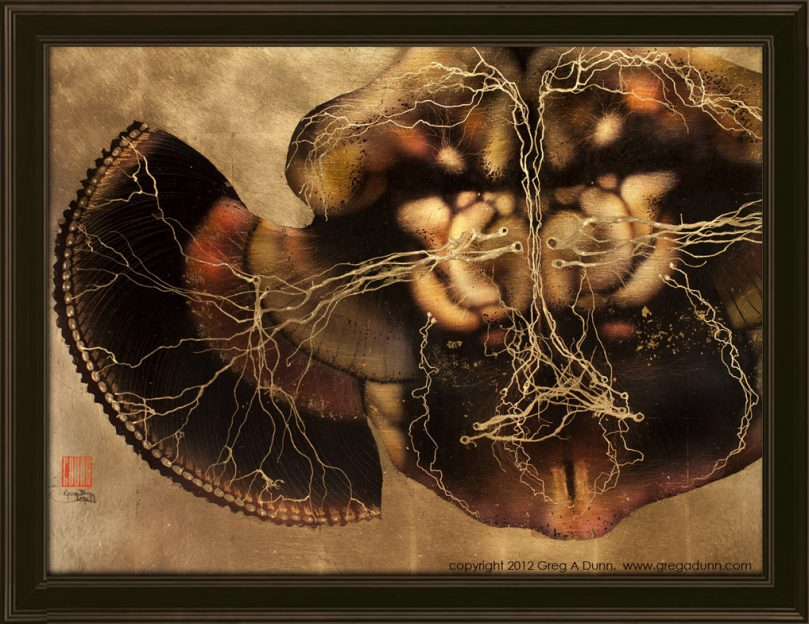 Drosophila Brain framed